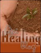 healing blog